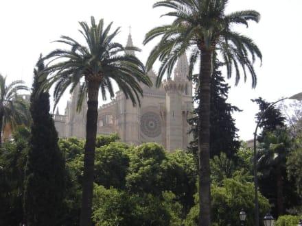 Kathedrale von Palma - Kathedrale La Seu