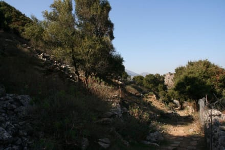 Antikes Driros - Antikes Driros