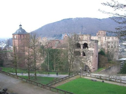Schloss - Schloss Heidelberg