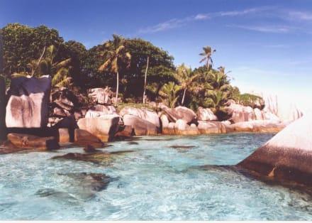 Coco Island - Coco Island