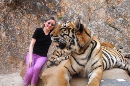 Im Tigerkloster - Tigertempel