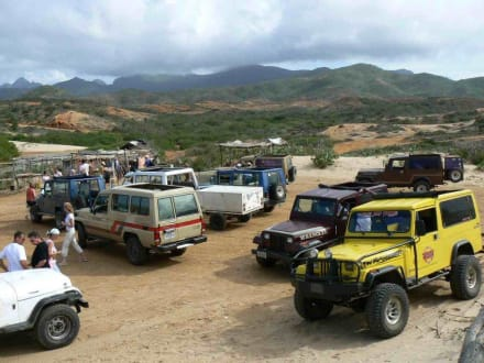 Jeeps - Jeep Safari