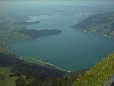 Schweiz - Rigi - Blickrichtung Zuger See - Rundtour Rigi