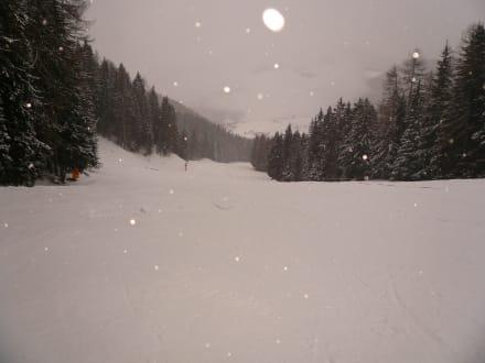 Einsame Piste! - Skifahren