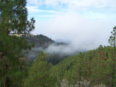 Im Norden, über den Wolken - Bergwelt