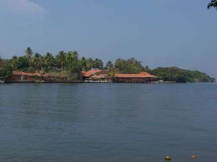 Bentota Fluss - Bentota Fluss- und Mangroven Tour