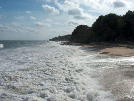 Der Goldstrand  - Strand Goldstrand