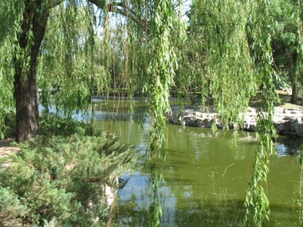 Zoopark - Peking Zoo