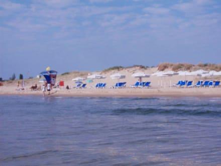 Unser Strandabschnitt - Strand Sonnenstrand