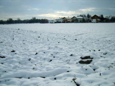 Der erste Schnee in Plattling - Plattling