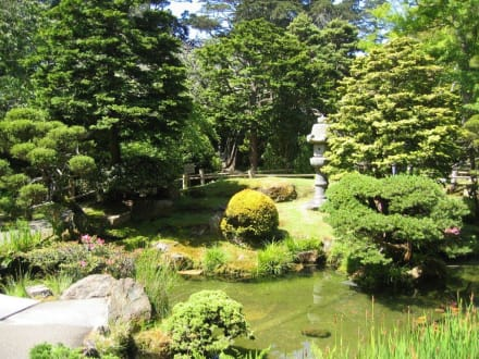 Der Japanese Tee Garden im Golden Gate Park - Golden Gate Park
