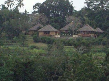 Siedlung - Westküste Lombok