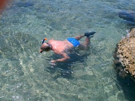 Schnorchler im glasklaren Wasser - Strand Kolymbia