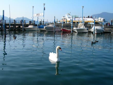 Lago d'Iseo - Hafen Iseo