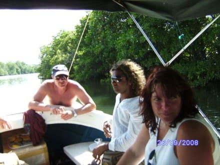 Bootsausflug (Bentotafluss) - Bentota Fluss- und Mangroven Tour