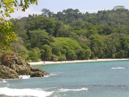 Strand Nationalpark Manuel Antonio - Nationalpark Manuel Antonio