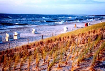 Nach dem Sturm - Strand Ahrenshoop