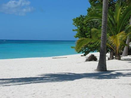 Saona Strand - Isla Saona