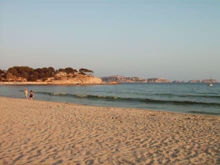 Strand von Paguera in der Abendsonne - Strand Paguera/Peguera