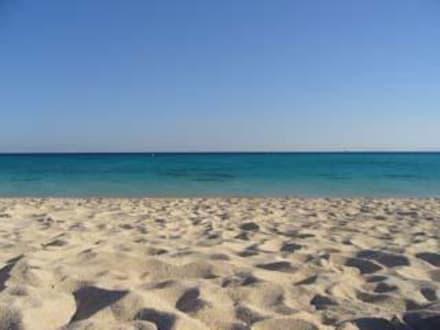 Traumstrand! - Tauchen Makadi Bay