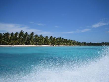 Fahrt mit Schnellboot nach Saona - Isla Saona