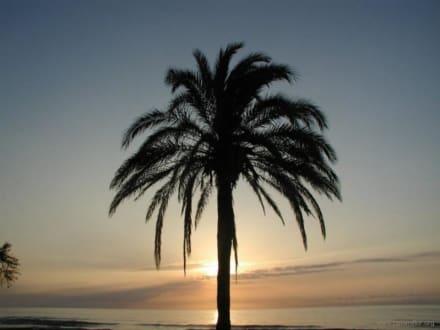 Sonnenaufgang Cala Millor - Strand Cala Millor