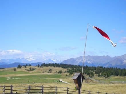 Blick bis in die Ötztaler Alpen - Rodenecker Alm