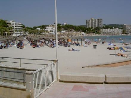 Strand Paguera - Strand Paguera/Peguera