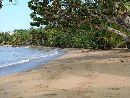 Strand von Las Terrenas - Strand Las Terrenas