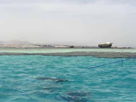Tauchen Sharm el Sheikh - Tauchen Sharm el Sheikh
