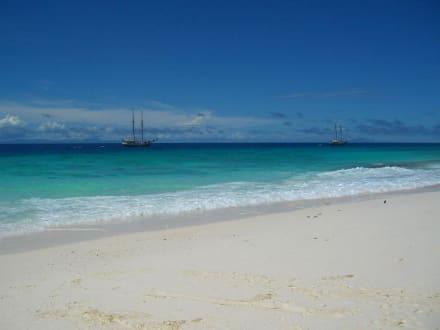 Sea Pearl und Sea Shell - Strand Beau Vallon Bay