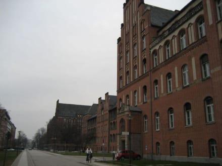 Gelände der Charité Berlin - Medizinhistorisches Museum der Charité