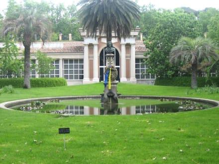 Teich mit Büste von Linné - Königlicher Botanischer Garten Madrid