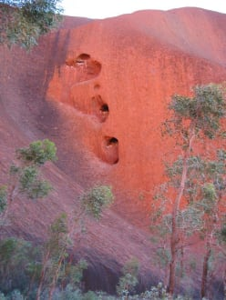 Mutijulu - Mala Walk - Ayers Rock / Uluru