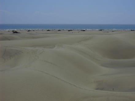 D(M)eine Spuren im Sand - Dünen von Maspalomas