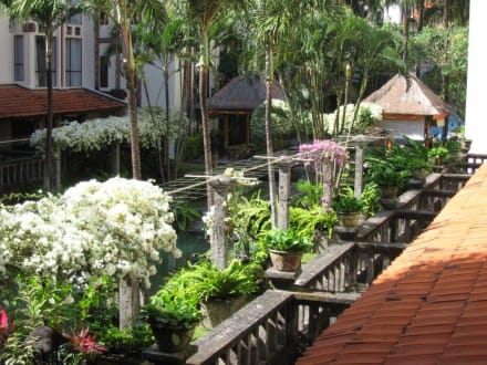 Jardin - Sanur Paradise Plaza Hotel