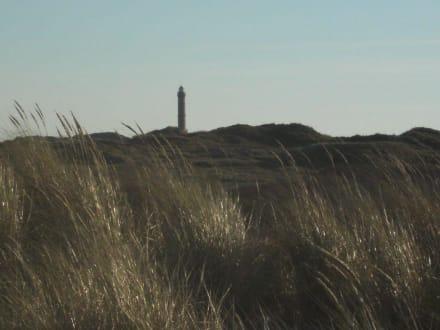 Dünen und Leuchtturm - Insel Norderney