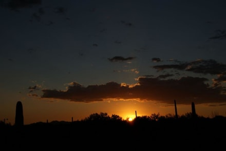 Sonnenuntergang - Tucson Mountain State Park