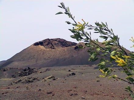Feuerberge in Timanfaya - Nationalpark Timanfaya (Feuerberge)