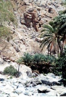 Bergschlucht - Heiße Quellen Al Thowarah