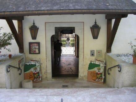 Eingang - Schloss Tratzberg