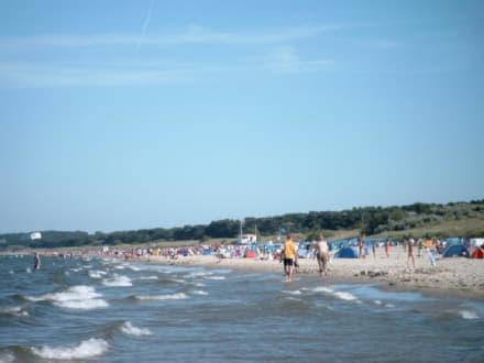 Strandansicht - Strand Trassenheide