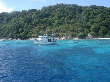Überwasser - Similan Islands