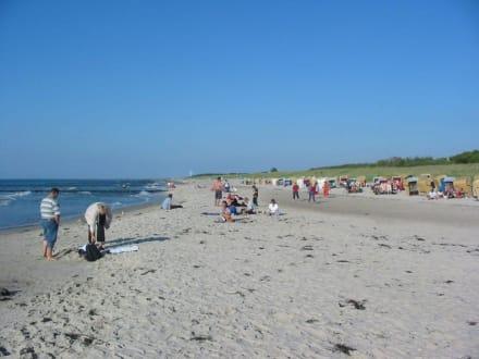 Strand von Markgrafenheide - Strand Markgrafenheide
