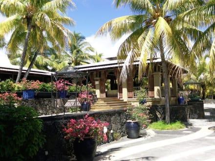 Unterhalb des Pools - Paradise Cove Boutique Hotel