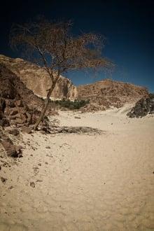 Im White Canyon - White Canyon