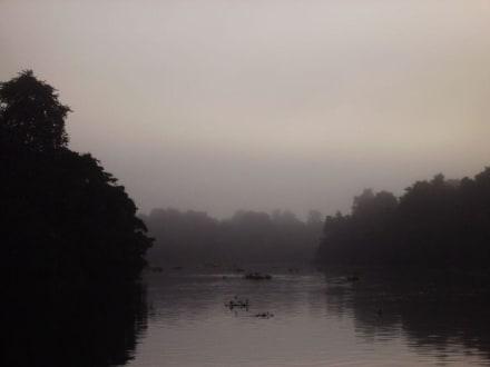 Der Morgen im Camp am Orrinoco Delta - Orinoco Delta