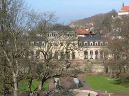 Stadtschloss Fulda - Stadtschloss Fulda