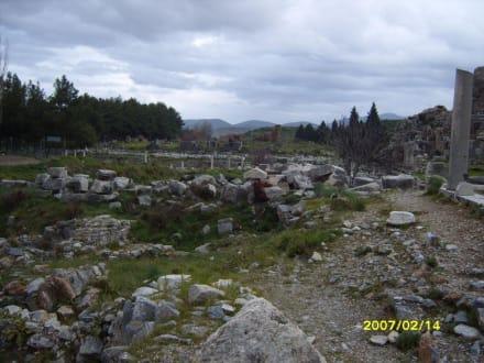 Ein Ausgrabungsfeld! - Antikes Ephesus
