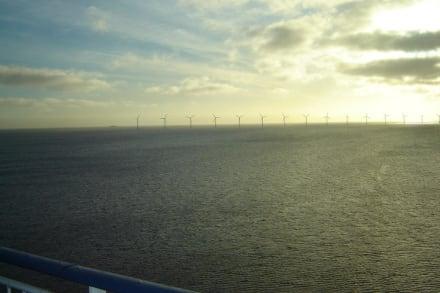 Der Windpark vor Kopenhagen von Deck 11 aus - Pearl Seaways